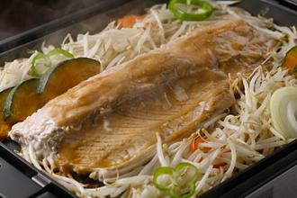 北海道日高沖定置網の秋鮭
